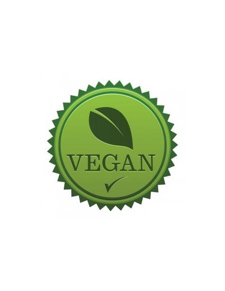 Veganer Damentanzschuh VC1620